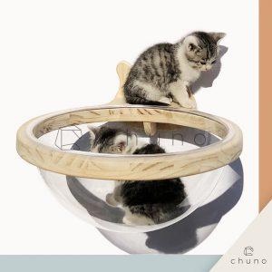 ชั้นแมวอวกาศติดผนัง CHUNO ออกแบบพิเศษ พร้อมหลุมใสอะคริลิคแบบเห็นตัวแมว